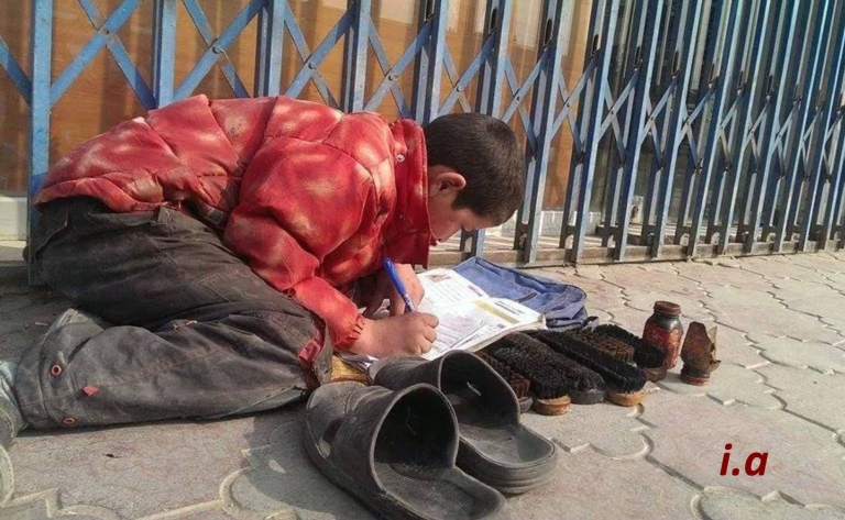 work study diligence in Turkistan