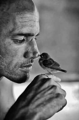 Birdy kiss